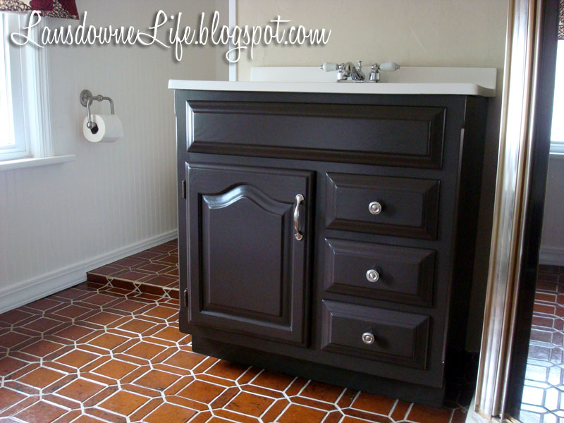 100 bathroom challenge painting the vanity lansdowne life for Dark paint colors for bathroom vanity