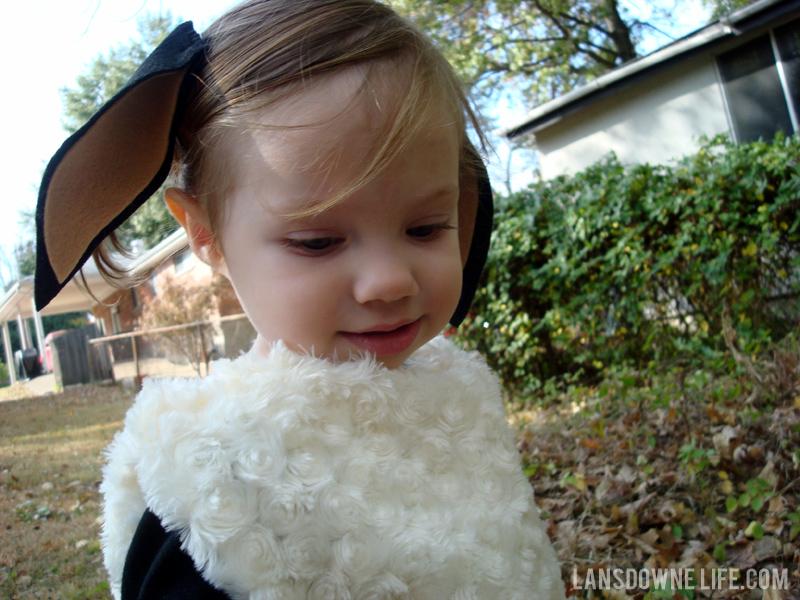 ... homemade lamb costume ...  sc 1 st  Best Kids Costumes & Kids Lamb Costume - Best Kids Costumes