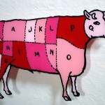 Back-painted glass cow diagram