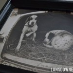 Another antique find: Two dogs in a trunk!
