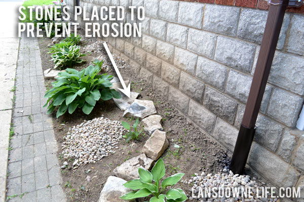 Landscaping intervention part 2 let 39 s rock lansdowne life for Landscaping rocks and stones near me
